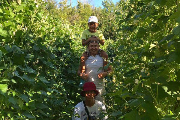 vacaciones rurales con niños