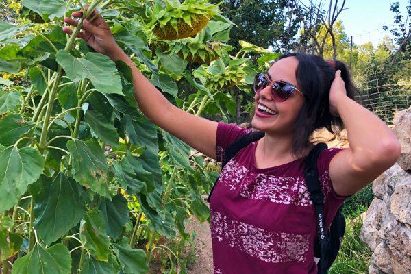 agricultura ecológica, el capriolo