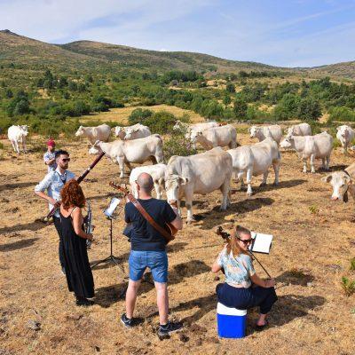 Cultura-inquieta-concierto-vacas-el-capriolo