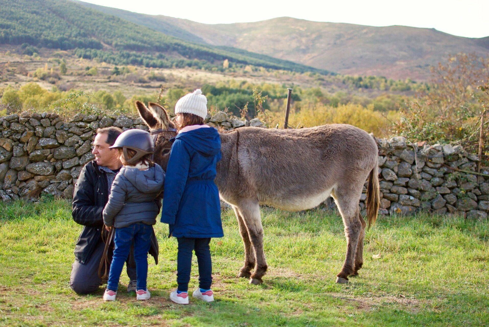 Planes con niños: actividades con animales cerca de Madrid