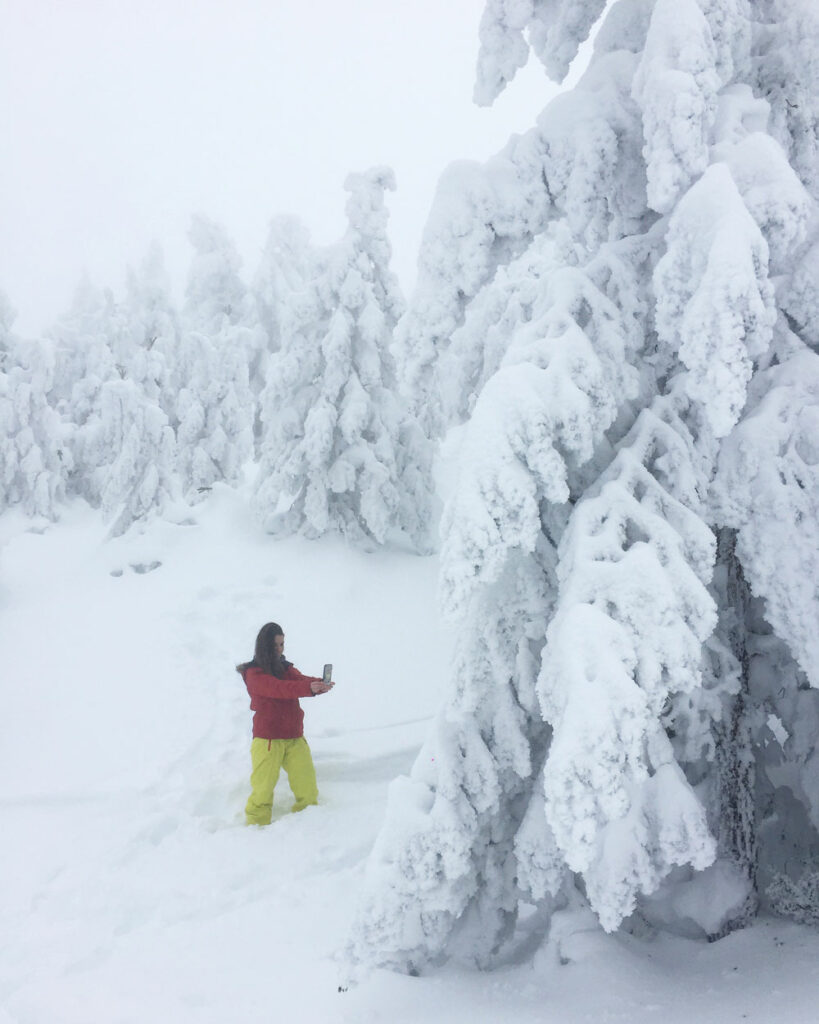 Nieve en la Sierra Norte de Madrid