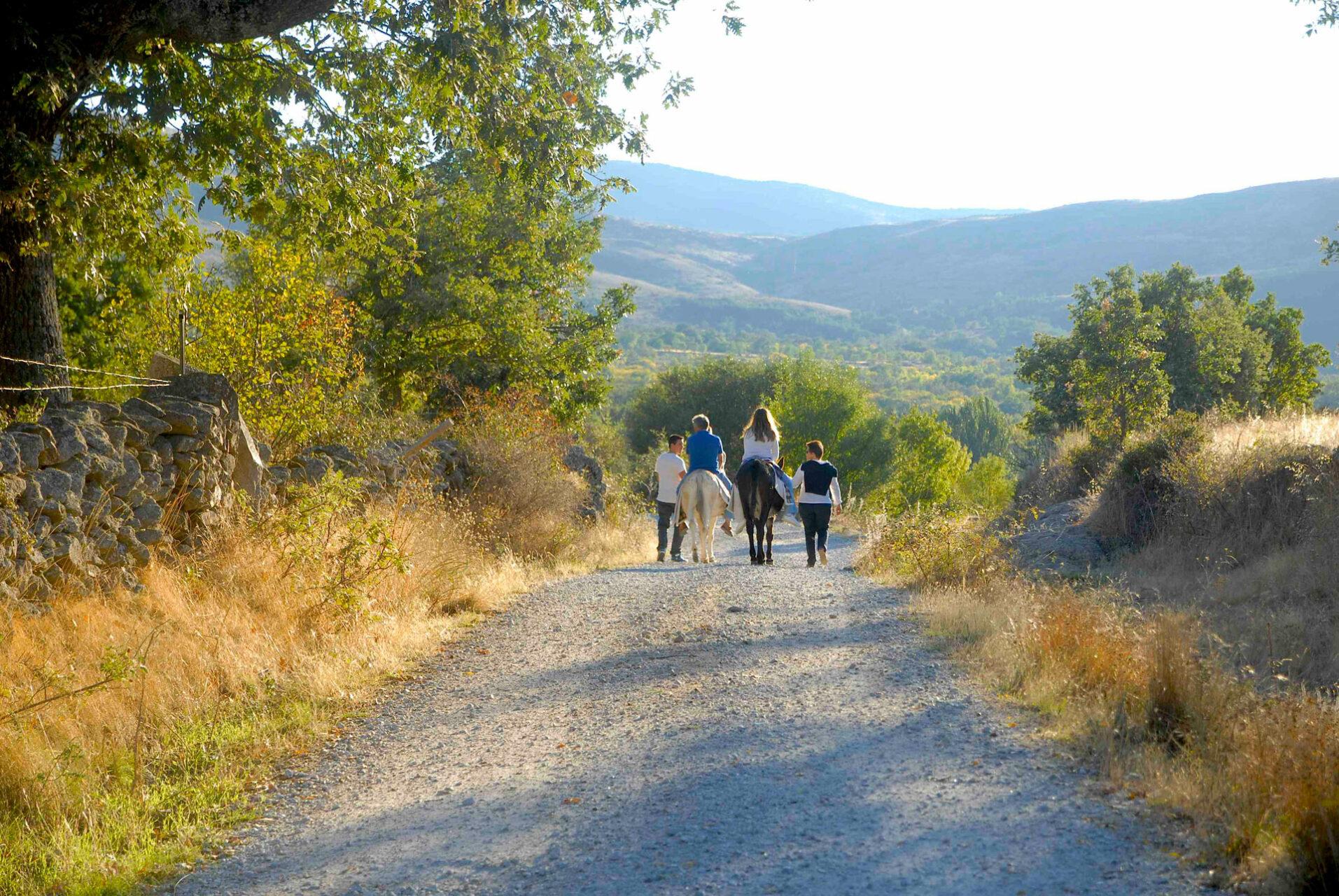 Paseo en burro para niños en la Sierra de Madrid: el mejor plan familiar