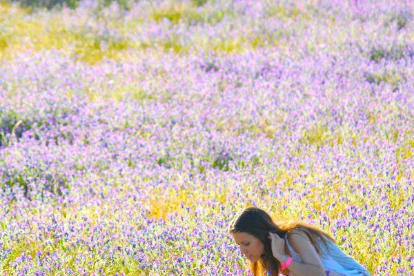 Talleres-por-temporada-primavera