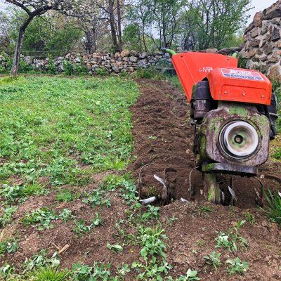 agricultura-ecologica-el-capriolo7