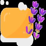 talleres de jabón artesanal el capriolo icono