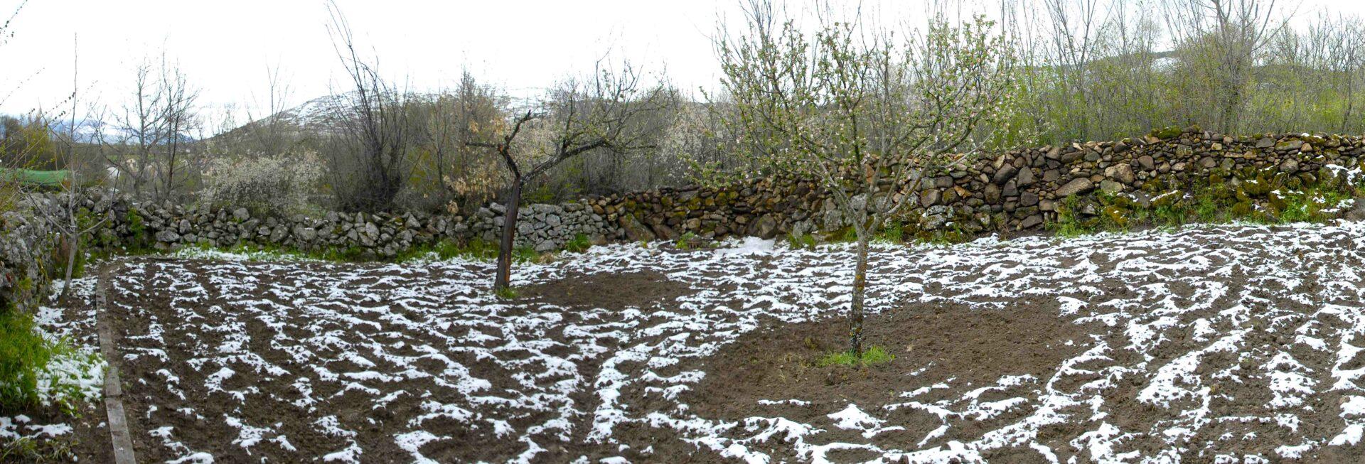agricultura ecológica, huerto el nogalejo