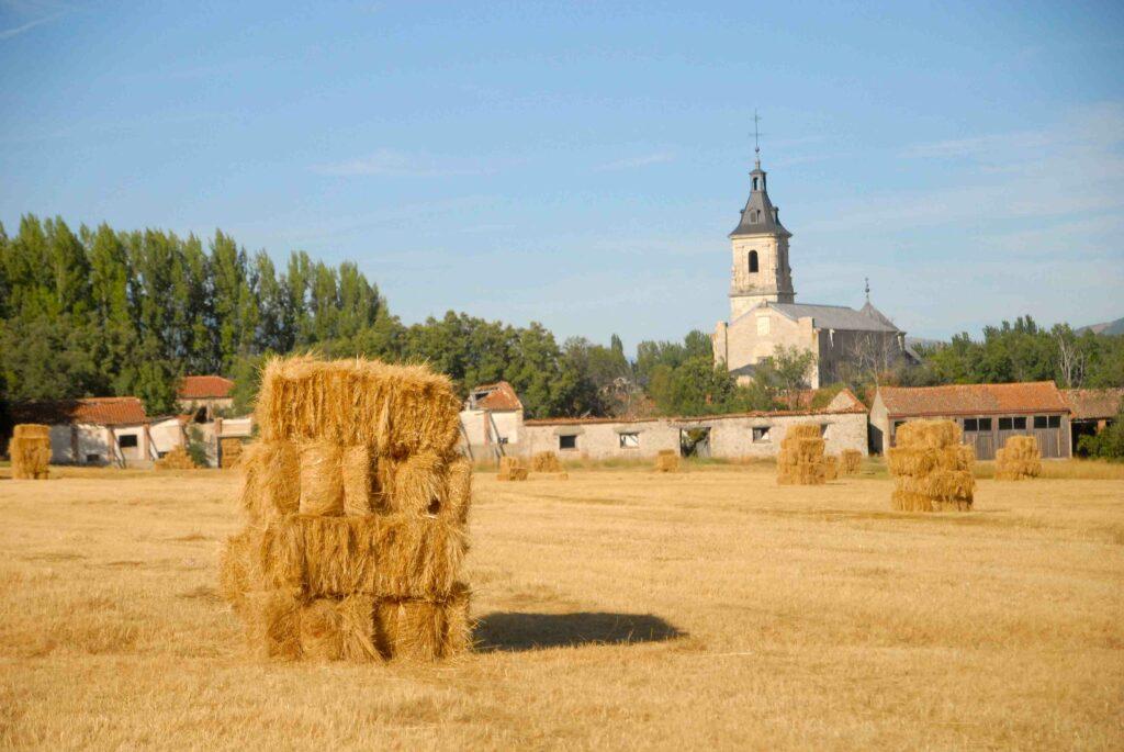 Verano en el Valle del Lozoya