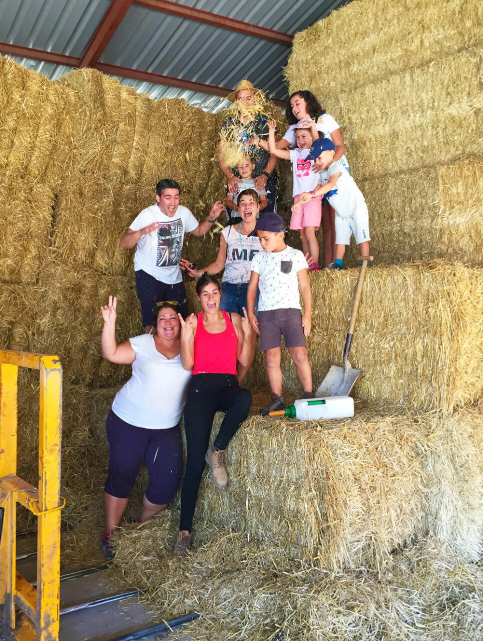 visita a la ganadería agroturismo el capriolo