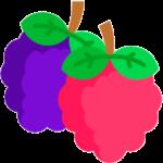 talleres de mermeladas agroturismo el capriolo icono